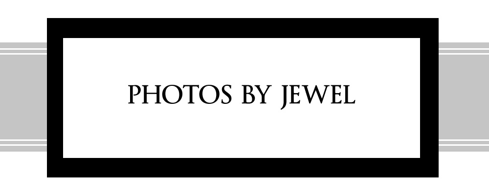 Photos By Jewel Blog logo
